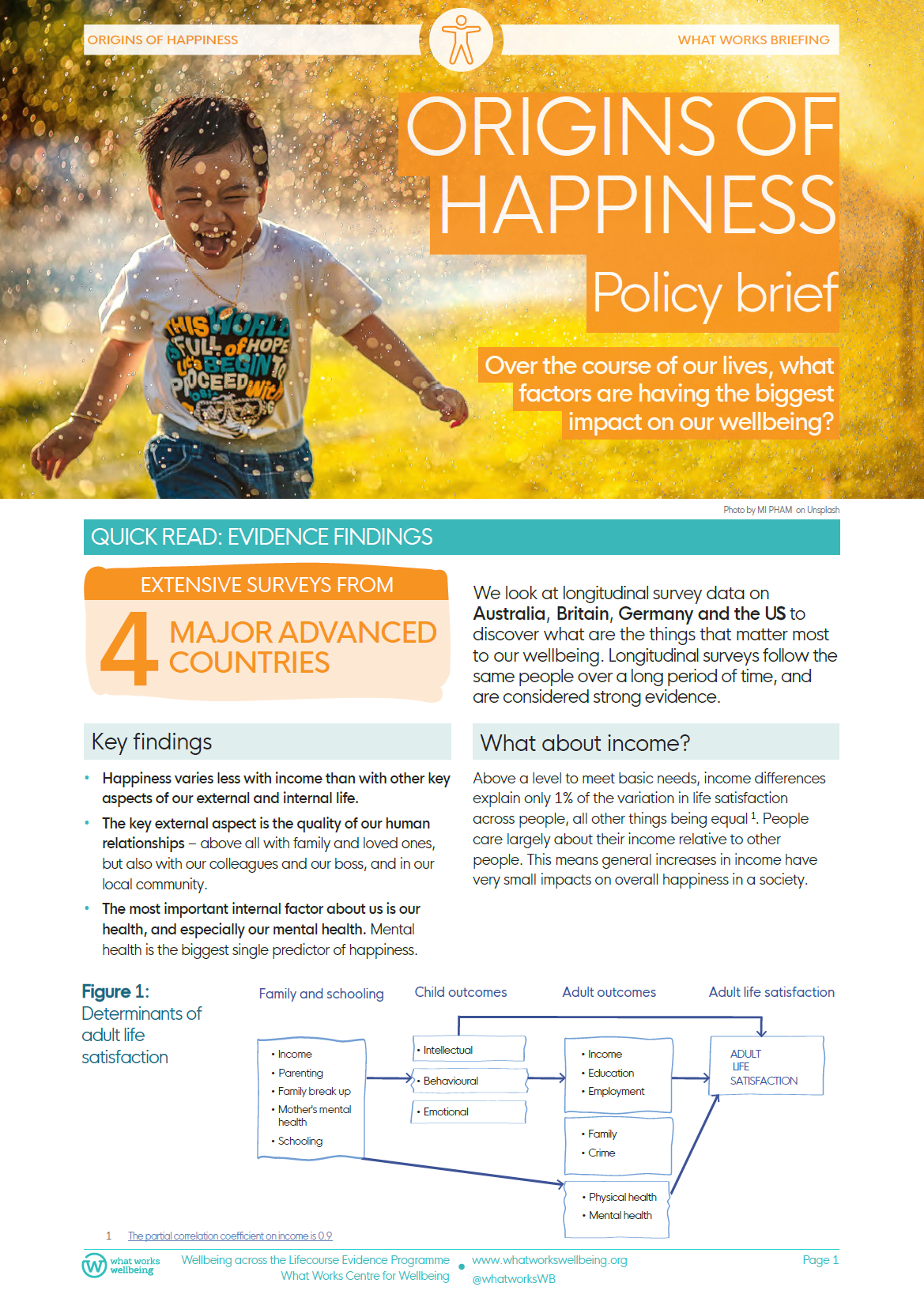 Origins of happiness: briefing