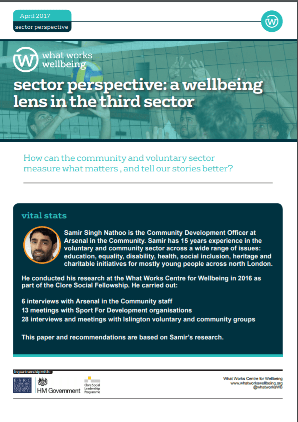 Sector Perspective: a Wellbeing Lens in the Third Sector